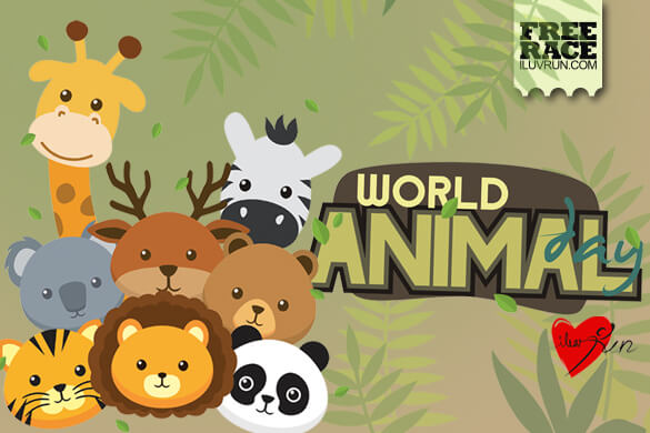 Join Now for FREE! World Animal Day Run