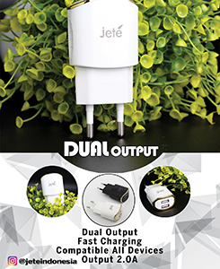 Dual Output Charger for Home